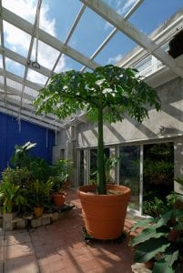 Enjoy the Aesthetic of Your Very Own Patio Room Enclosure