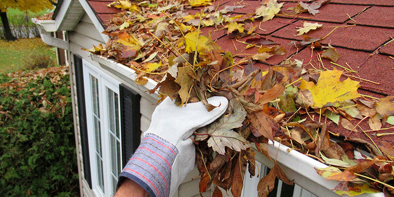 A Homeowner's Guide to Gutter Cleaning