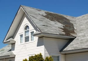 professional for a roof replacement